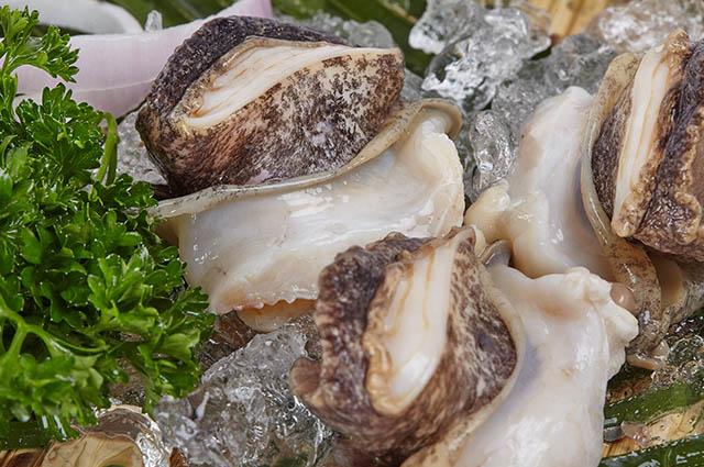 原汁海螺肉