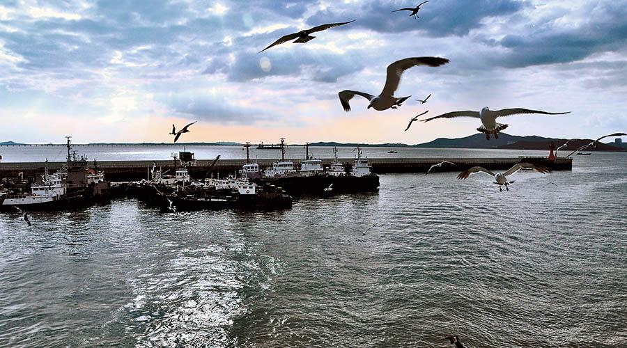 东港——舌尖上的小城,一个您来了就不想走的地方~